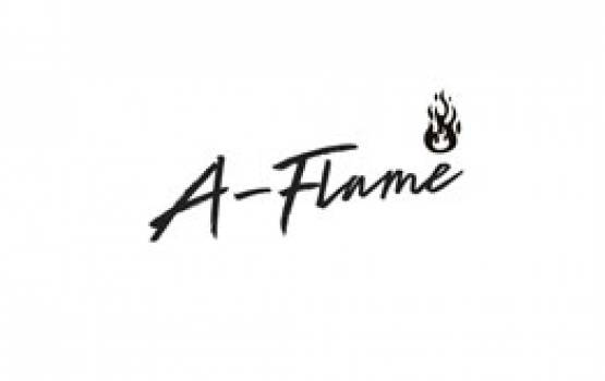 A Flame Partners Intro